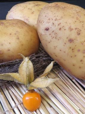 Pommes de Terre Spécial Four
